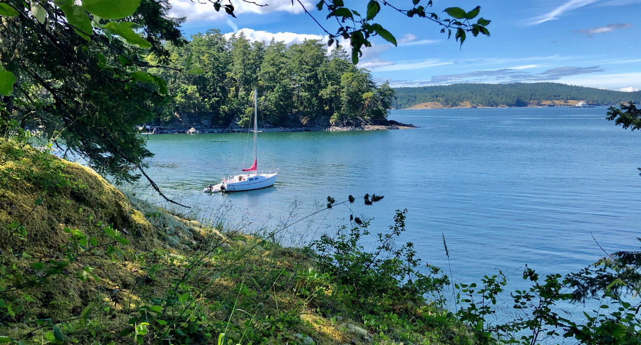 This Is Where You Can Stay On Saturna Island To Take In Its Tranquil Setting