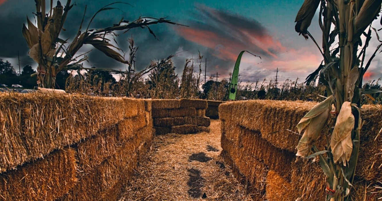 Ever Heard Of A Nighttime Corn Maze? Here Are Some That Are Serving Serious October Vibes