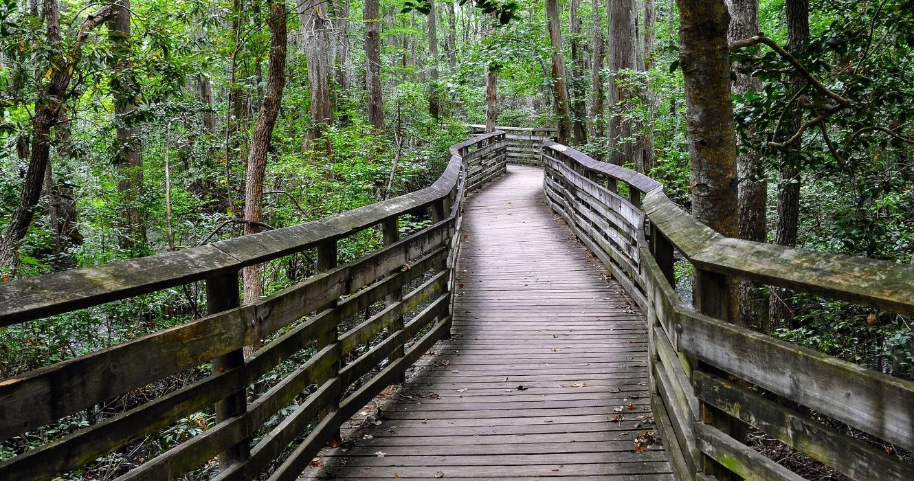 These Beachfront State Parks Are The Perfect Day Trip From Virginia Beach